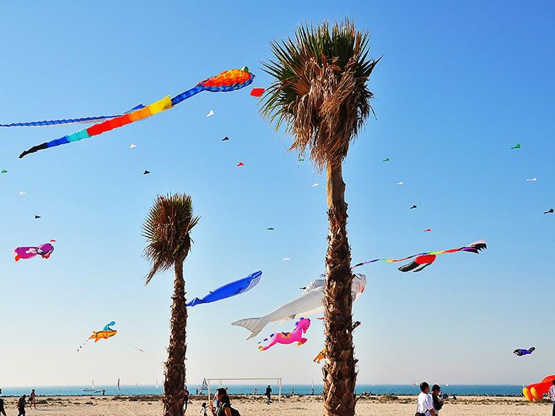 سواحل دیدنی دبی