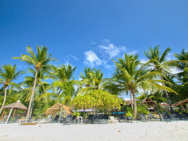 جزیره لانگ تنگا