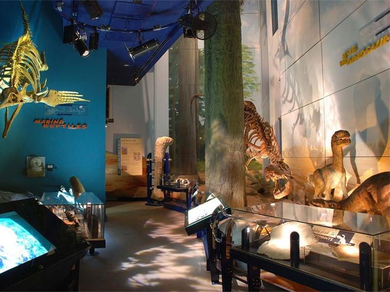 موزه تاریخ طبیعی شارجه