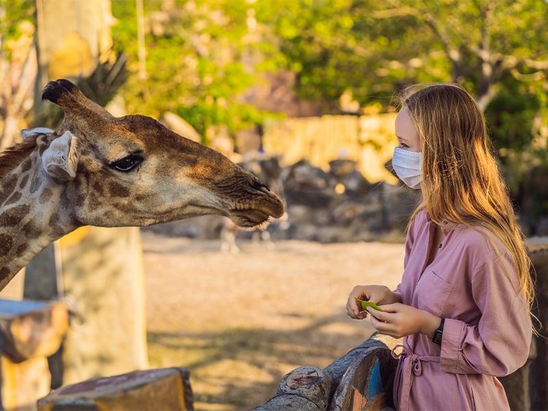 سفر به آفریقا در کرونا